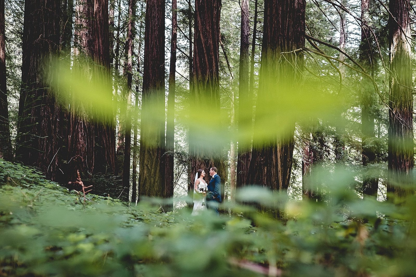 Glen Oaks Wedding Big Sur Elopement 071