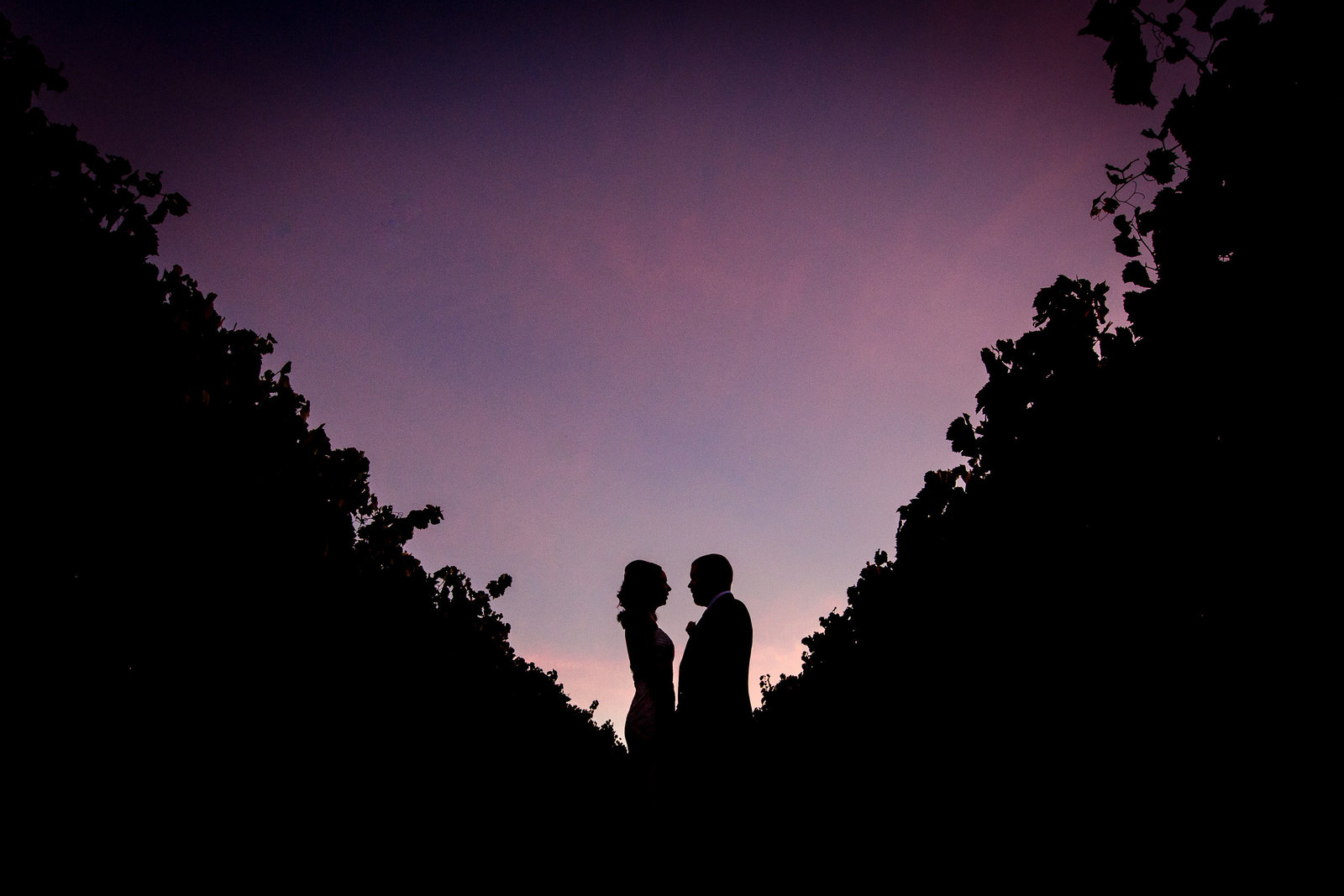 wedding silouette golding winery