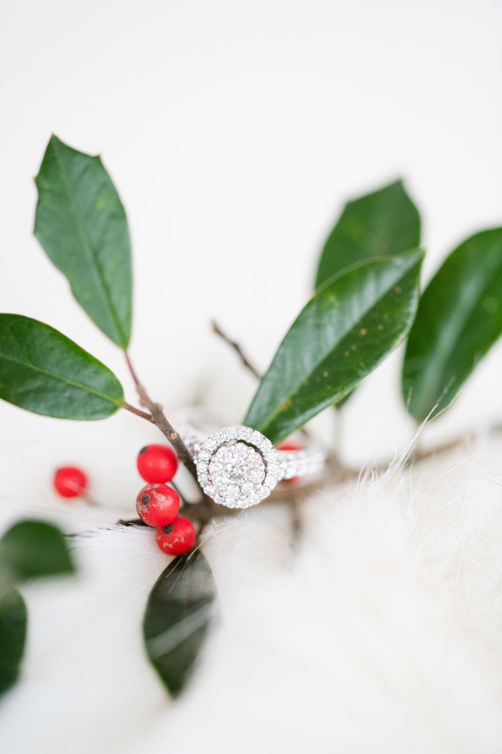 engagement ring on fur with red berries winter wedding