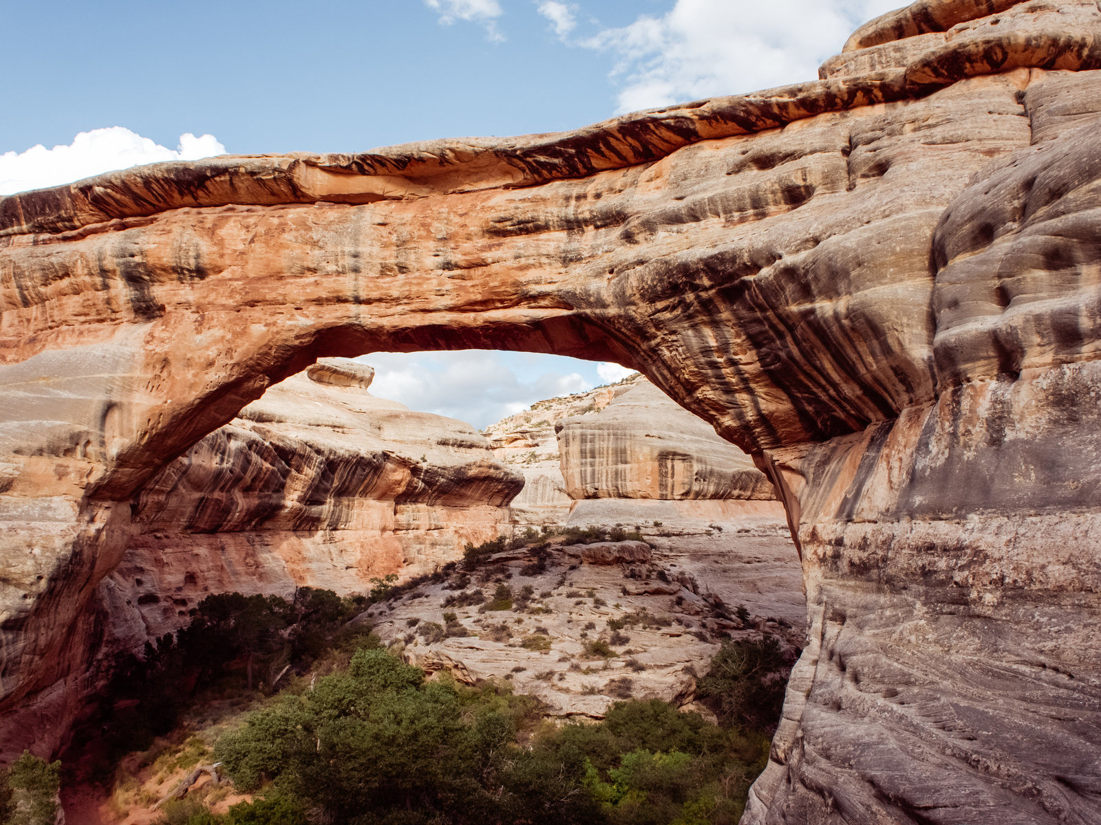 Sasha_Reiko_Photography_Travel_Utah_Arches_Canyon_Lands_Zion_Grand_Canyon-8