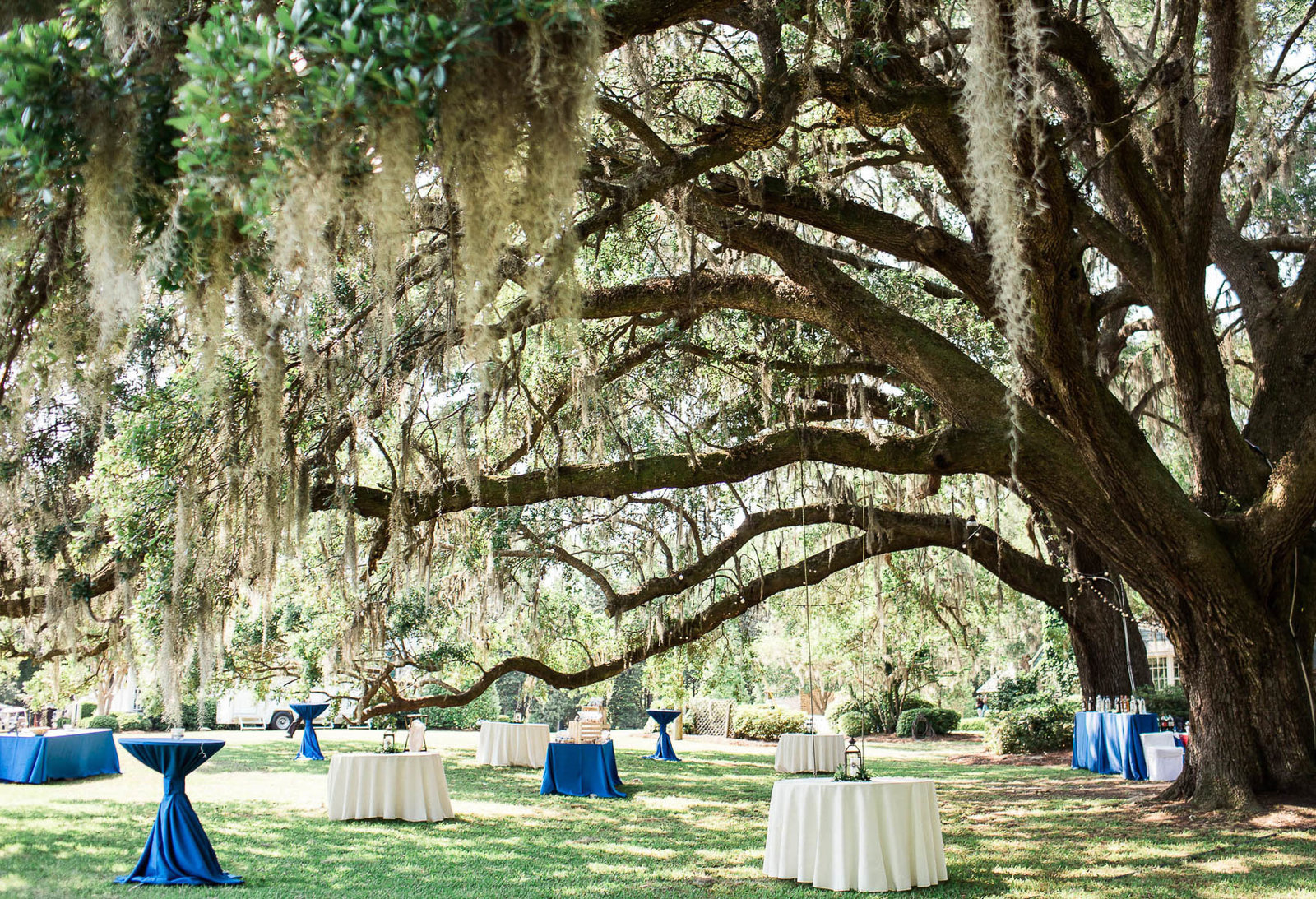 Lanterns are set on tables under an oak tree, Oakland Plantation, Mt Pleasant, South Carolina