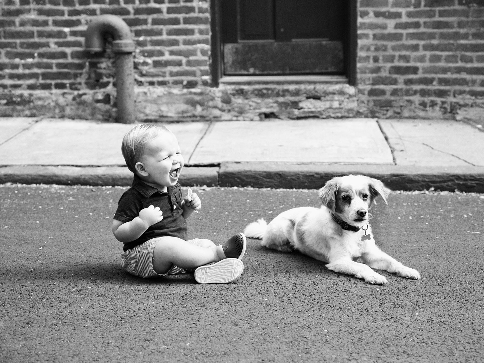little boy laughing with his dog