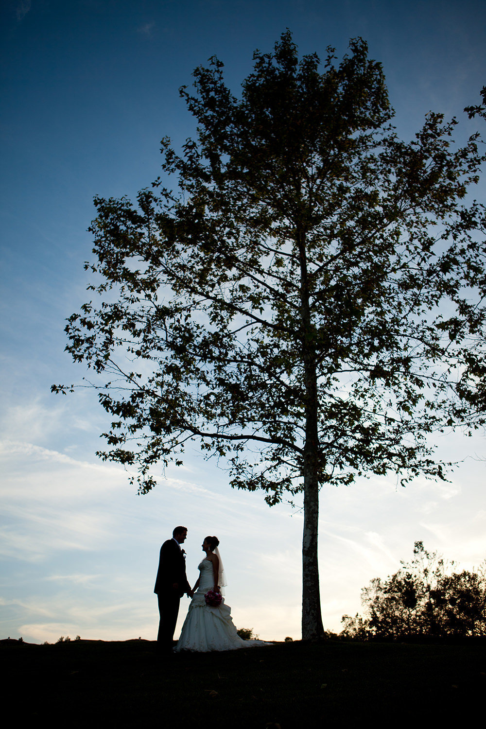bride and groom at the beautiful wedgewood sunset