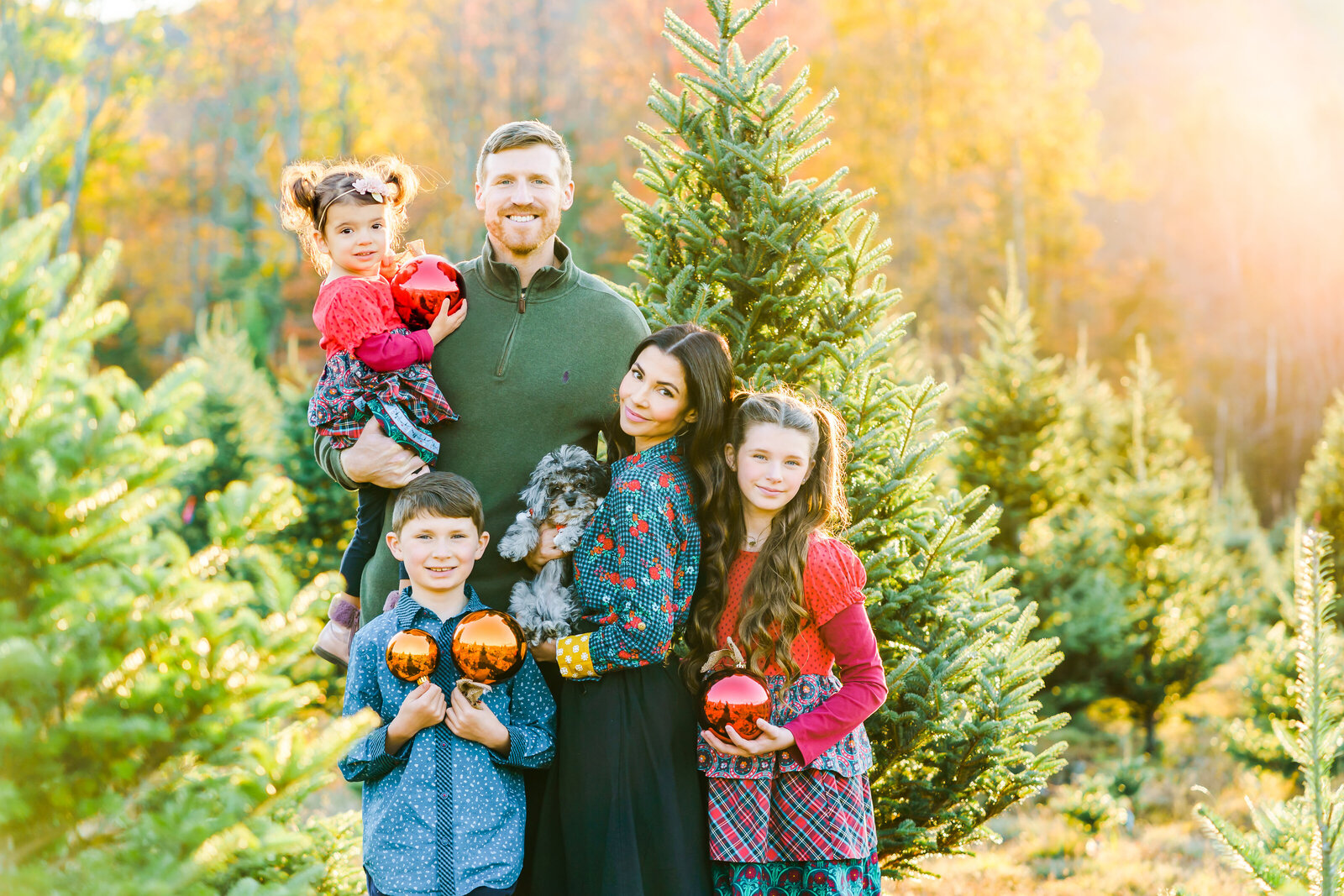 Family photos at New England Tree Farm