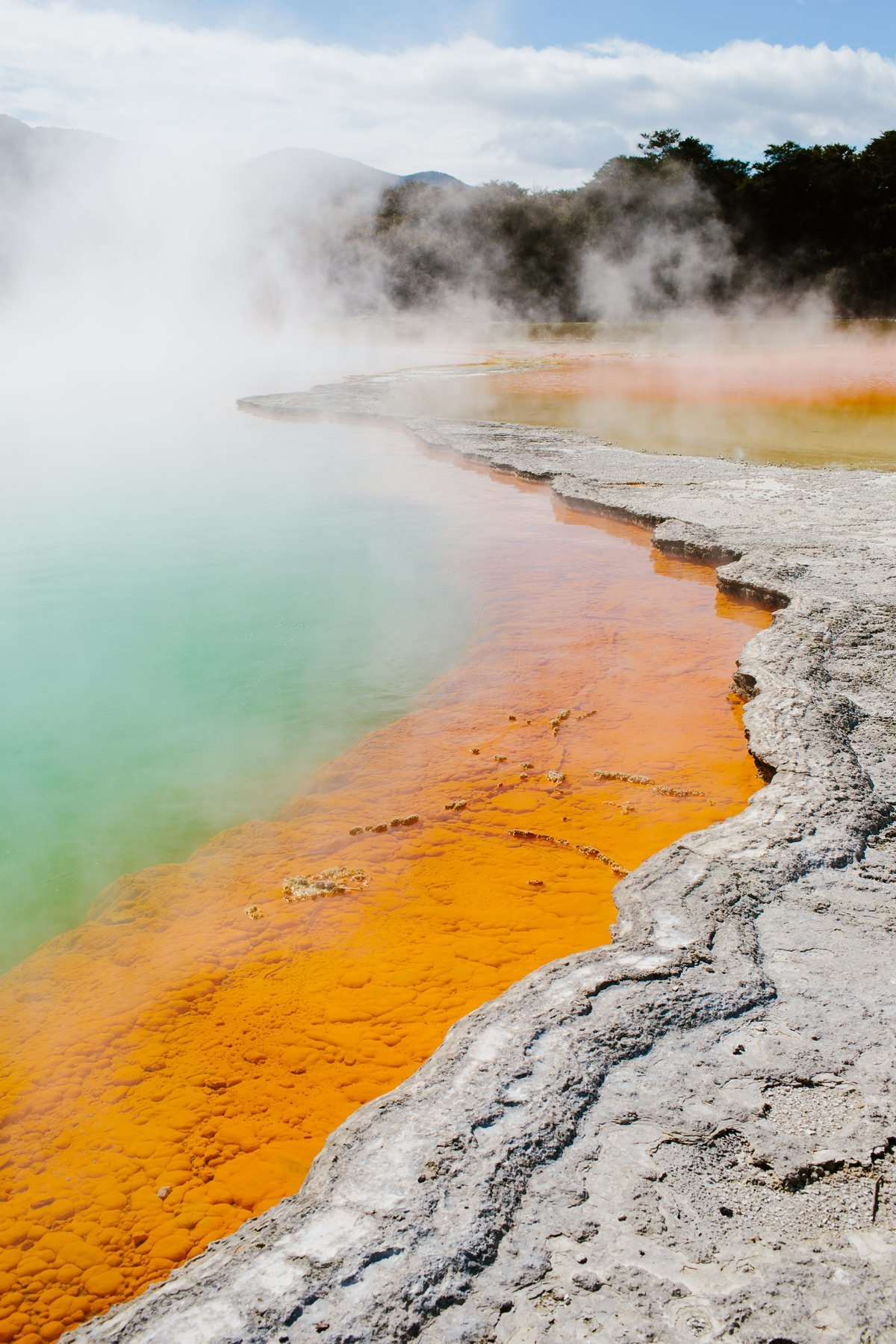 cameron-zegers-travel-photographer-new-zealand-geothermal