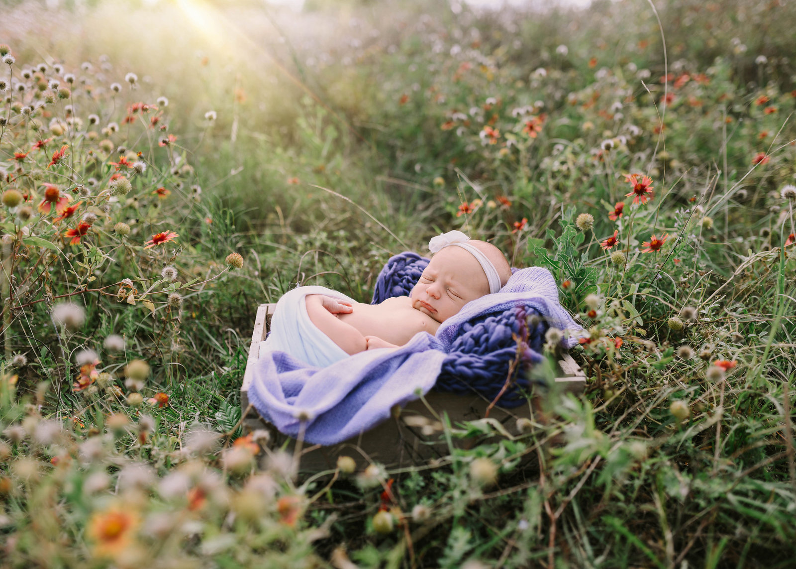 outdoornewbornsession3