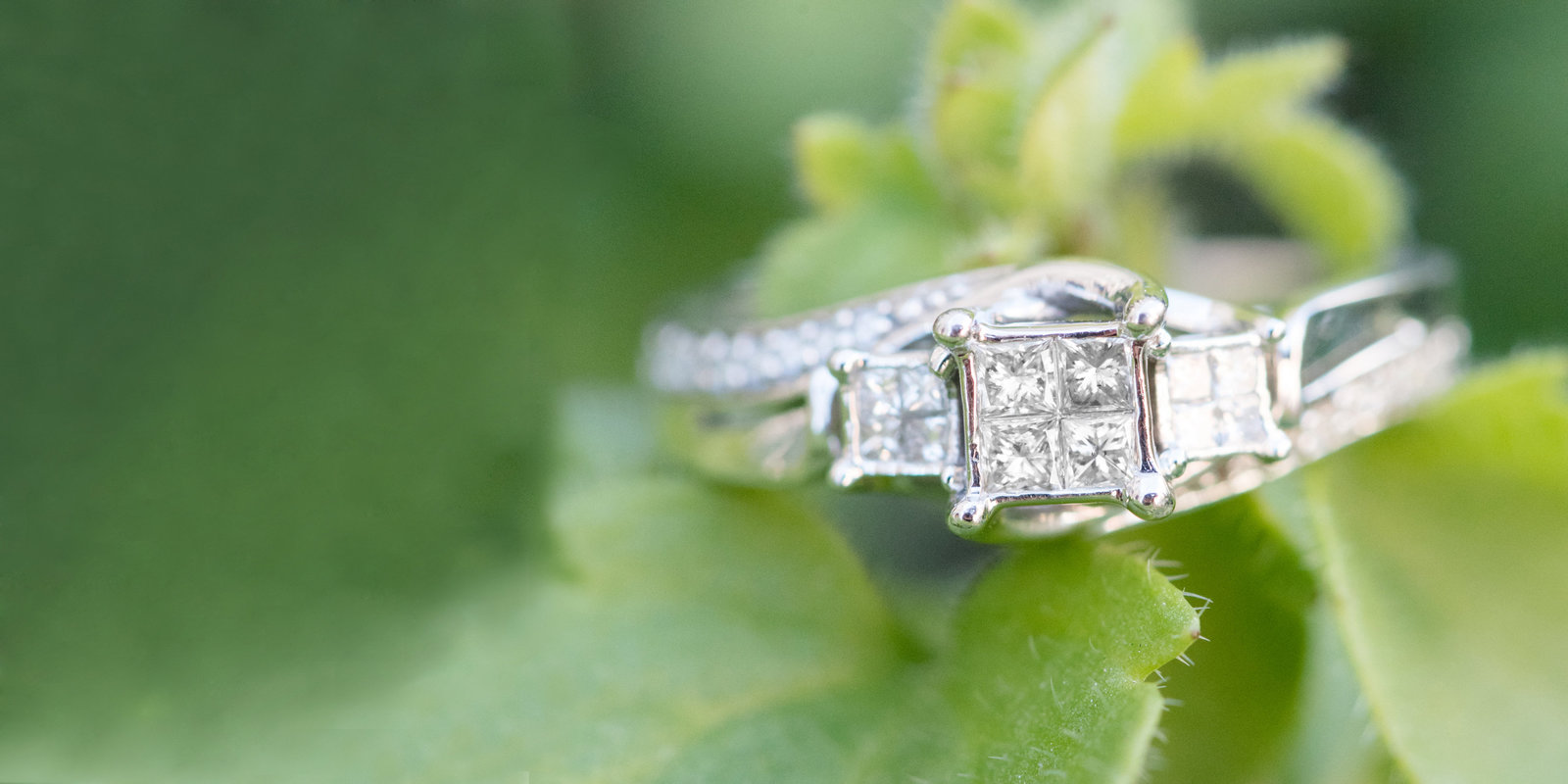 Engagement Ring on Green leaf - Utah wedding photographers