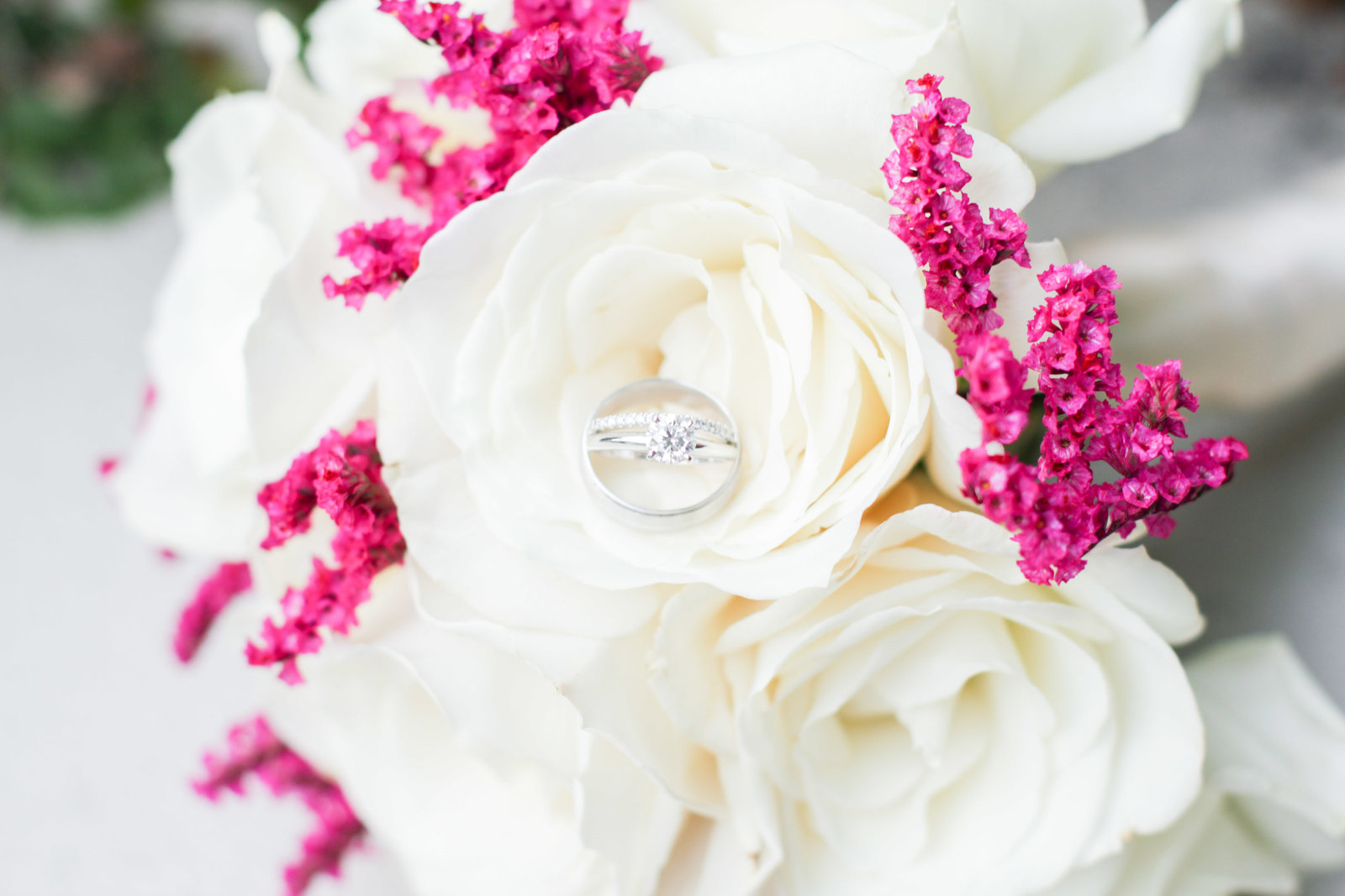 charlotte wedding photographer detail shot of wedding rings