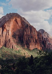 Zion_National_Park_Landscape (1 of 1)-min