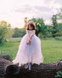 Photo of girl in long lavender tutu.