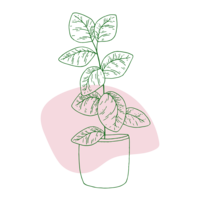 Plant IconHolly-Marie