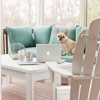 remy french bulldog workspace