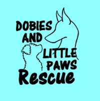 Make a donation to dobies and little paws rescue