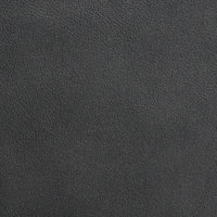 Leather-Pearlescent-Iron