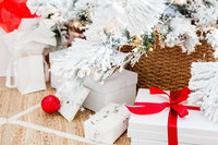 haute-stock-photography-home-for-the-holidays-collection-final-7