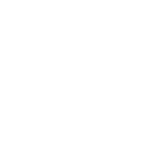 rise Official logo_White