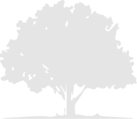 LOM tree png