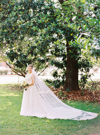 southern-bridal-portrait-magnolia-tree-mississippi