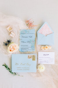 not jess a planner baby blue wedding invitation