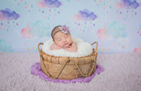 Baby Aria s Newborn Photo s-Baby Aria-0006