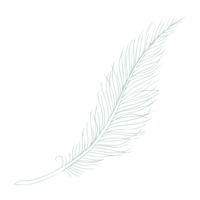 BlueGreen-Feather