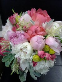 Coral charm peonies with succulents billy balls astilbe