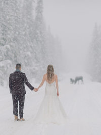 emerald lake wedding photographers