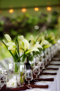 Cape Cod Wedding Caterers