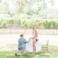 A surprise proposal at William Chris Vineyards in Fredericksburg Texas by Allison Jeffers Photography_0050