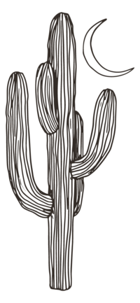 Meg Brooke_Cactus Icon_Outline
