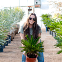 QuiannaMarie-Arizona2019-Succulents-6 copy