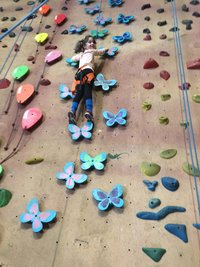 Active Arts Workshop_climbing butterflies (1)