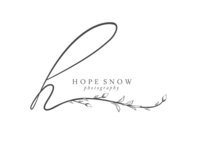 hopesnow copy