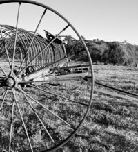 Black and white image of a field and old plow