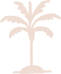 Tan-Palm-Tree