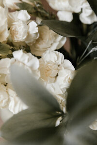 White flower petals nestled in an array of rich green leaves