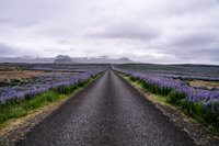 Lowres_Iceland_RMC-77