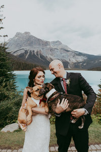bride and groom holding dogs