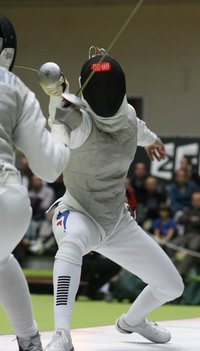 Fencing II - Photo Credit Pixabay