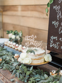 Jordan-and-Alaina-Photography-Nashville-Wedding-Photographer-Long-Hollow-Gardens-Cake