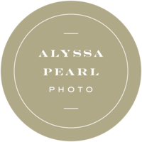 Alyssa Pearl Photography Minneapolis St Paul Twin Cities Minnesota Wedding Engagement Lifestyle Photographer Adventure Travel Destination17