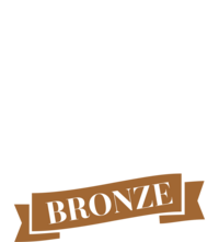 2020_image_awards_logo_-_WHTbronze