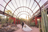 aaron-kes-photography-desert-botanical-garden-wedding-an-17