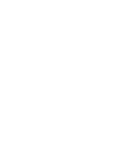 rise n°3 Official logo_White