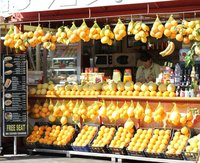 Sorrento Lemon Stand