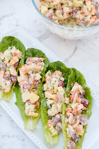 Chicken Salad Boats Tara-Tan-Fit-Foodie-Mommy-IIN-Health-Nutrition-Wellness-Coach2