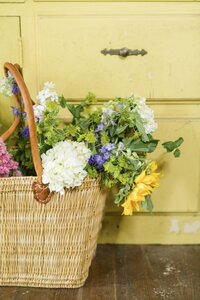 yellow-wall-with-flowers-in-basket1