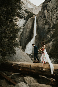 bride and groom walking on log over water