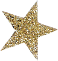 pngfind.com-gold-star-sticker-png-4935635