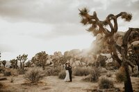 JOSHUA TREE ELOPEMENT 10